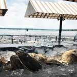 Oyster Bar Image