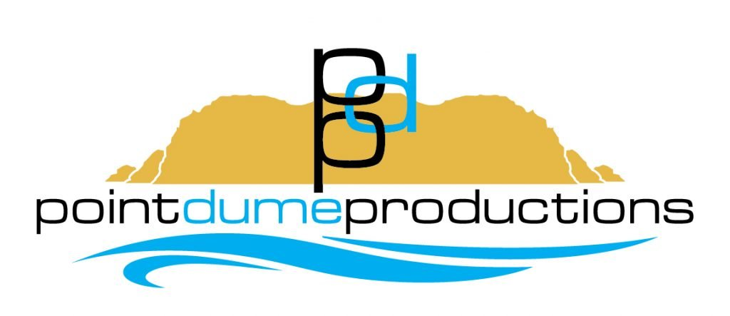 pdp logo 02